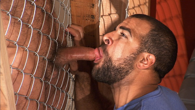 TitanMen bearded alphamale Jesse Jackman ass fucked bottoms Roman Wright 1 download full movie torrents and gay porn photo gallery Titan Men: Jesse Jackman with Roman Wright